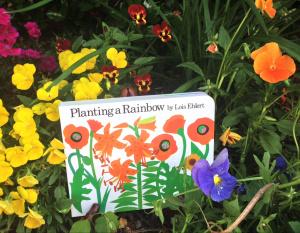 plantingarainbow.cover